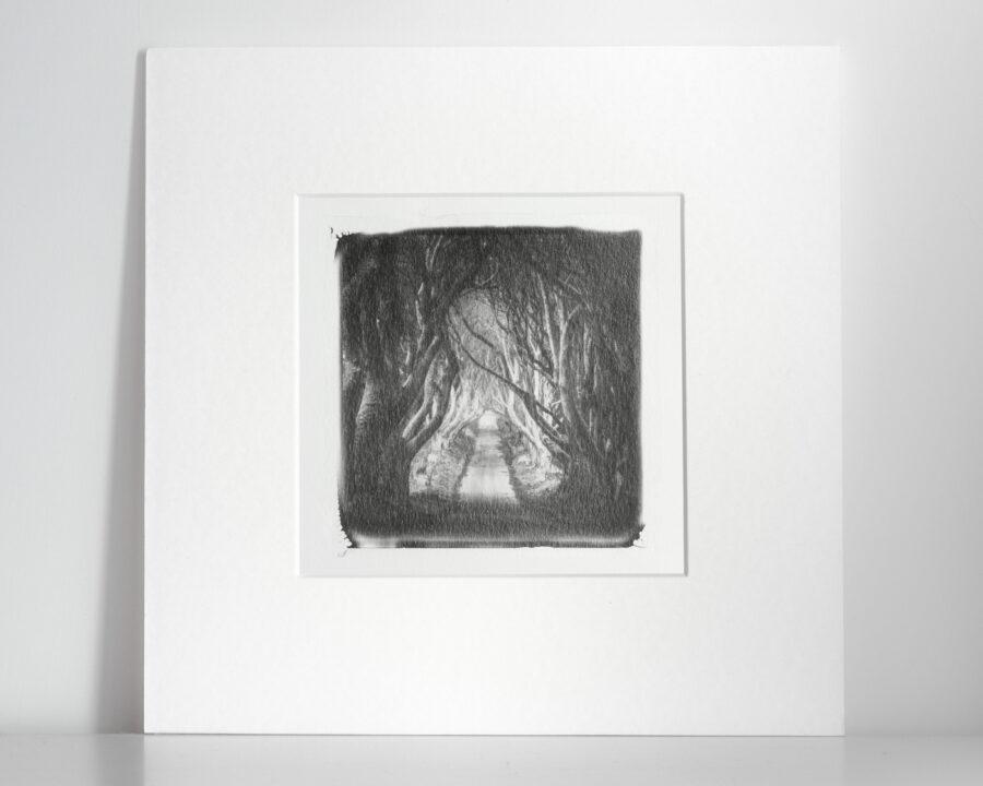 Alessandro-Zompanti-Emulsion-Lift-18