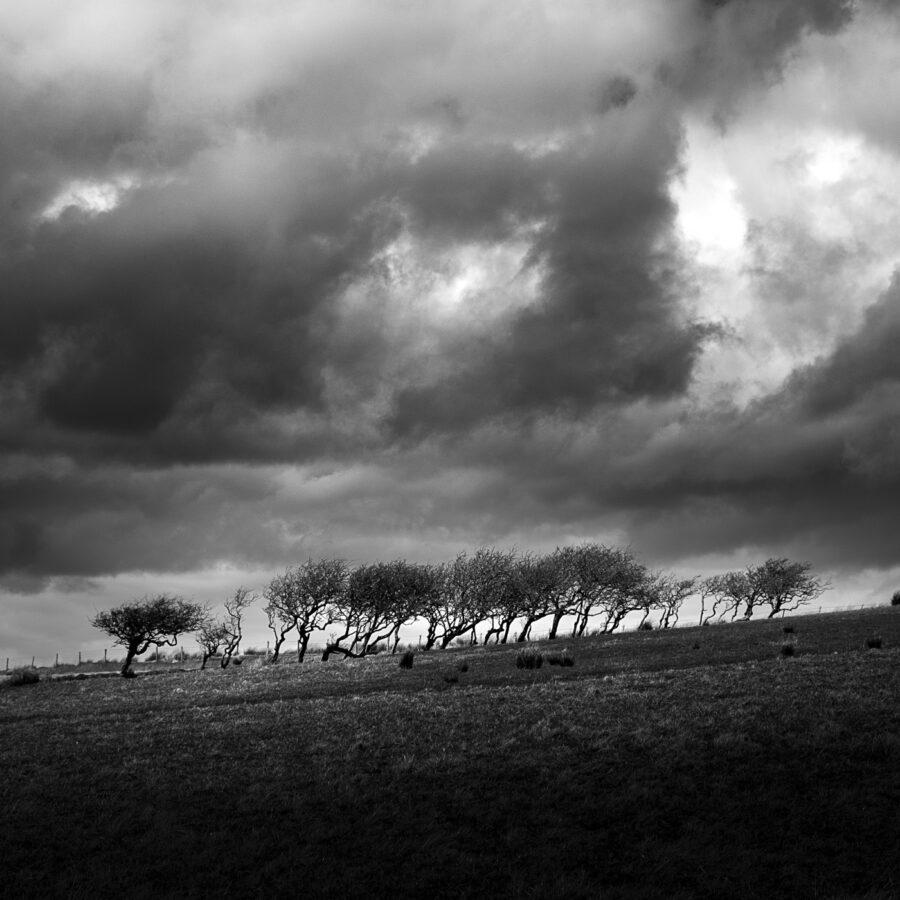 alessandro-zompanti-irlanda-nord-northern-ireland-03